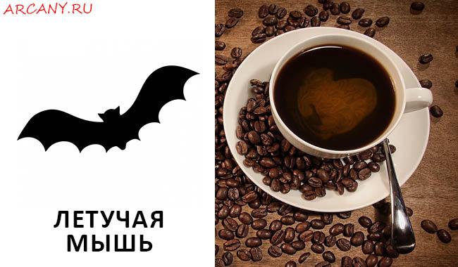 Гадание на кофейной гуще: Летучая мышь - Толкование символа