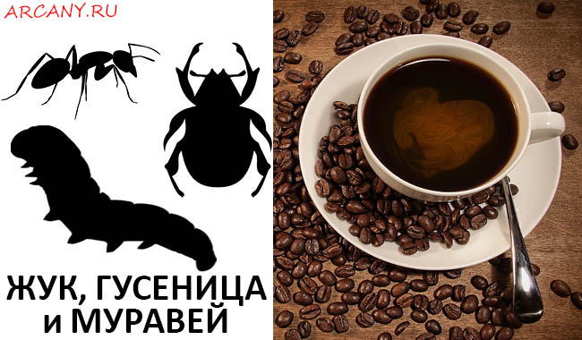 гадание на кофейной гуще толкование символов в картинках гусеница клубы бараках адресами