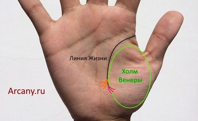 Значение тройной и расстраивающейся в конце линии Жизни на руке